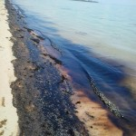 Statement by Ministry of Transport on Reported oil on Adelaide Beach