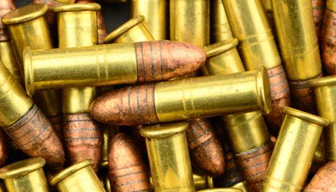 .22-ammo