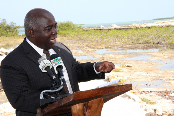 Deputy Prime Minister Hon. Philip Brave Davis.