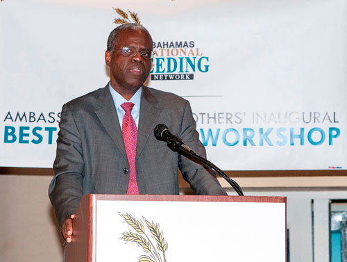 John Rolle, Financial Secretary in the Ministry of Finance addresses the attendees of the Frank Crothers Inaugural Best Practices Seminar hosted by the Bahamas National Feeding Network speaking on VAT and its effects on charities. (Photo by Derek Smith Jr.)
