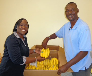 MORE than 2,500 pounds of bananas were presented to schools and charities in North Andros by the Bahamas Agriculture and Marine Science Institute (BAMSI). The donations were part of its focus on the United Nation's World Food Day October 16. The purpose of the day is to help global communities readjust their outlook in the fight against hunger, and provides them an opportunity to commit to the eradication of hunger in their lifetime. Pictured above are BAMSI's Farm Manager Everton Parkes (right) as he presents two boxes of bananas to the Institute's Executive Director Dr. Raveenia Roberts-Hanna as part of a special gift to the Institute and the students.