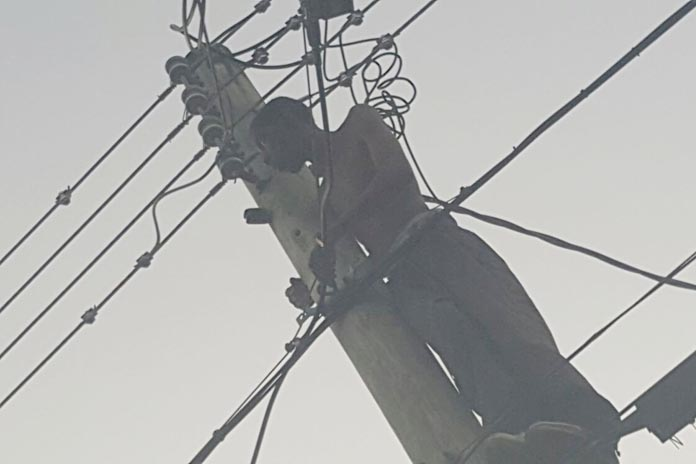 A troubled mind climbed an electricity pole on Market Street this morning.